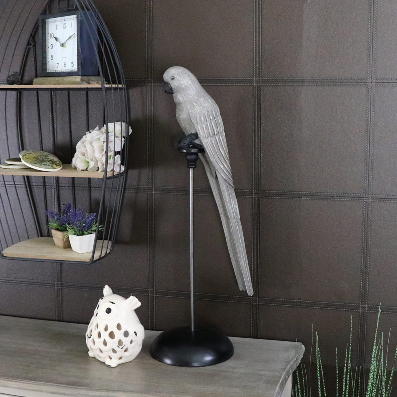 Large African Grey Parrot Perched on Stand