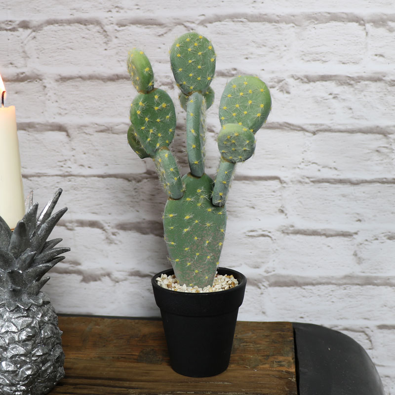 Artificial Flat Leaf Cactus Plant in Black Pot