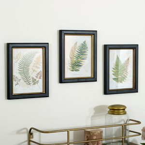Set of 3 Framed Fern Wall Prints