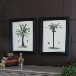 Set of 2 Wall Mounted Framed Vintage Palm Tree Prints