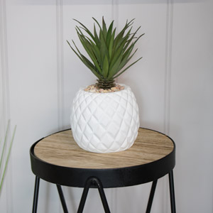 Artificial Succulent Plant in Pineapple Pot