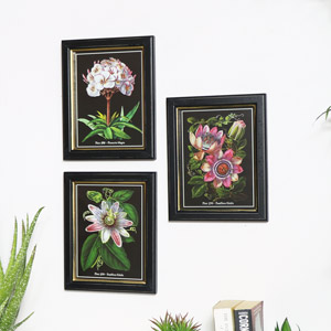 Set of 3 Botanical Wall Prints